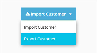 Bulk Import or Export Customer