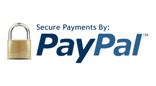 Accept Payment Using PayPal
